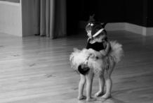 6 летняя танцовщица собрала 16 000 000 просмотров за неделю